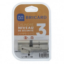 BRICARD ASTRAL 15691 Cylindre 40+50 mm double entrée laiton