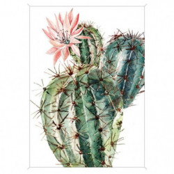 Image encadrée baguette minimaliste Cactus fleur rose - MDF
