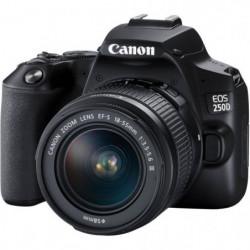 CANON 250D Appareil photo Reflex + Objectif 18-55 IS STM - N