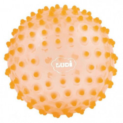 LUDI Balle Sensorielle Orange - Diametre 20 cm