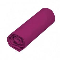 COTE DECO Drap housse 140x190 cm - Violet