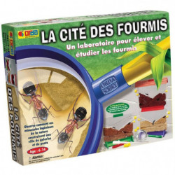 La Cité Des Fourmis