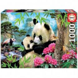 EDUCA  1000 pandas