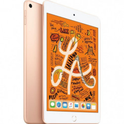 "iPad mini - 7,9"" 256Go WiFi - Or"