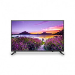 "SCHNEIDER-LED32-SCP202H TV LED HD - 32"" - HD 720p - PVR"