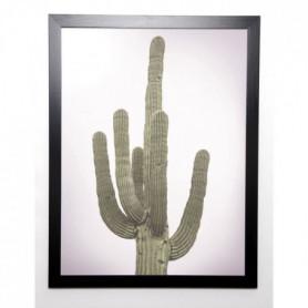 BRAUN STUDIO Affiche encadrée Cactus Totem 57x77 cm