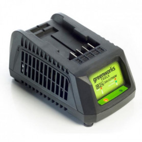 GREENWORKS TOOLS Chargeur de batterie universel