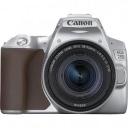 CANON 250D Appareil photo Reflex + Objectif 18-55 IS STM - Argent