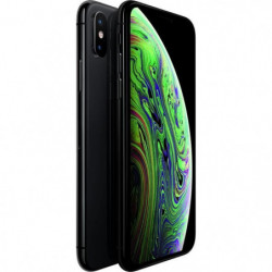 APPLE iPhone Xs Gris Sidéral 512 Go