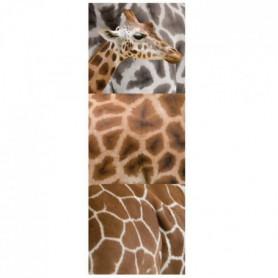 PLAGE Sticker déco - Limpopo/1 Planche 24x68cm
