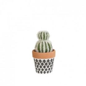 Mini Cactus double - En pot ethnique noir