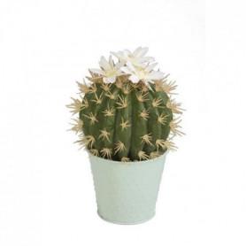 Cactus - En pot pastel vert d'eau