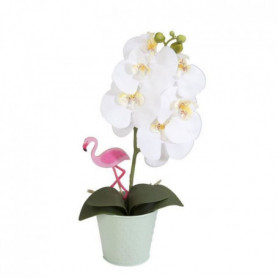 Orchidée blanche - En pot pastel vert d'eau