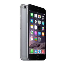Apple iPhone 6 Plus 16 Go Gris - Grade C
